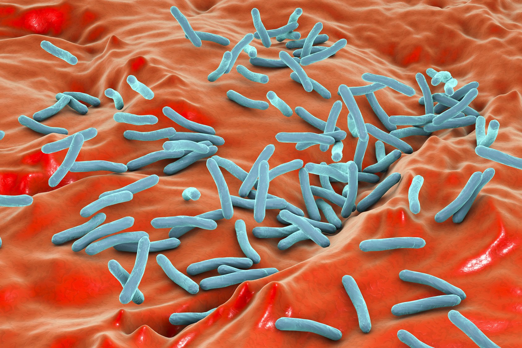 Dr_Kateryna - Fotolia - Microscopic view of bacterium Mycobacterium tuberculosis inside human body, model of bacteria, realistic illustration of microbes, microorganisms, bacterium which causes tuberculosis